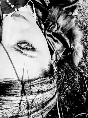 Foto di Daniela Pungitore