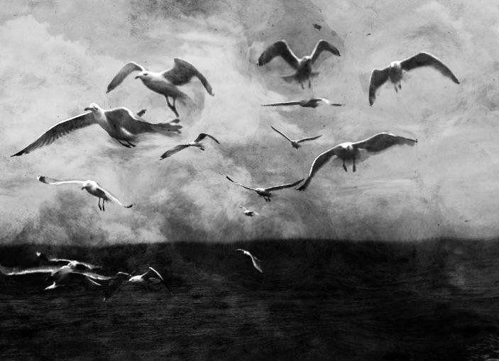 Foto di Maria Rosa Cortes