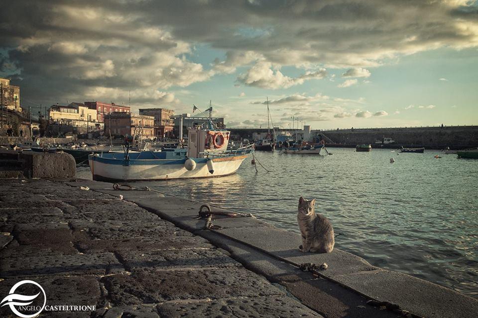 Foto di Angelo Casteltrione