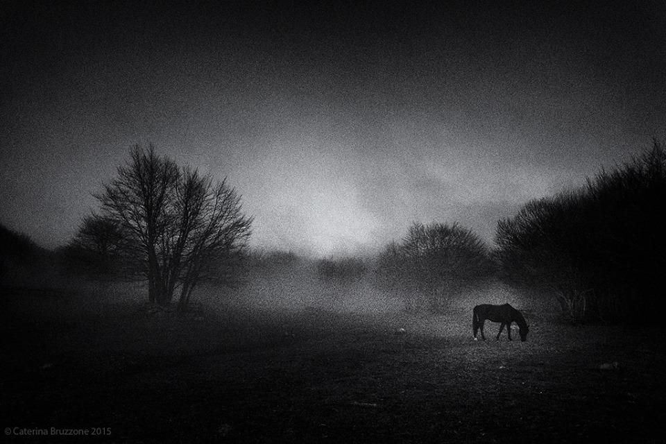 Foto di Caterina Bruzzone